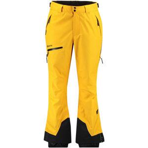 O'Neill PM GTX 2L MTN MADNESS PANTS  S - Pánské lyžařské/snowboardové kalhoty